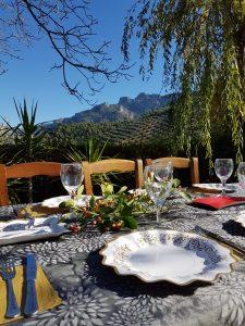 Almuerzo en el campo con platos imperio